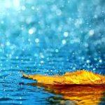 kekuatan doa, hujan berkah, kisah teladan
